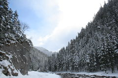 Polonia, montañas de Tatra Imagen de archivo
