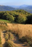Polonina Carynska kulle i Bieszczady berg i sydostliga Polen - den Bieszczadzki nationalparken Arkivbilder