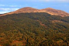 Polonina Carynska kulle i Bieszczady berg i sydostliga Polen - den Bieszczadzki nationalparken Fotografering för Bildbyråer