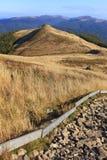 Polonina Carynska kulle i Bieszczady berg i sydostliga Polen - den Bieszczadzki nationalparken Arkivfoton