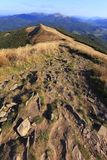 Polonina Carynska kulle i Bieszczady berg i sydostliga Polen - den Bieszczadzki nationalparken Arkivfoto