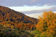 Polonina Carynska kulle och Prowcza dal i Bieszczady berg i sydostliga Polen Royaltyfria Foton