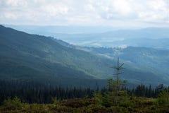 Polonina Dragobrat ed i picchi delle montagne carpatiche Fotografia Stock