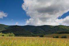 Poloniny, Slovacchia fotografia stock libera da diritti