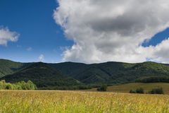 Poloniny, Slovakia. Field in Poloniny National Park, Slovakia Royalty Free Stock Photography