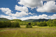 Poloniny, Slovakia. A meadow in Poloniny, Eastern Slovakia Royalty Free Stock Photography
