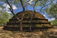Polonnaruwa市 斯里南卡 免版税库存照片