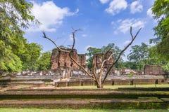 Polonnaruwa, Sri Lanka. Remains of the royal ancient city of the Kingdom of Polonnaruwa in Sri Lanka royalty free stock images