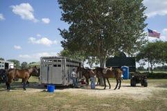 Poloponeys die op een spel Florida de V.S. worden voorbereid stock afbeelding