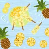 Polos con las bayas y las frutas stock de ilustración