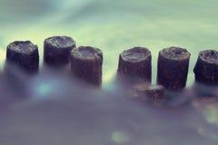 Polos de madera en agua Foto de archivo libre de regalías