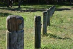 Polos de madera en parque fotografía de archivo
