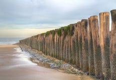 Polos de madera en una playa Fotos de archivo