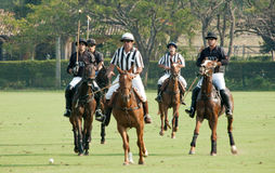 Poloturnering i Brasilien royaltyfria foton