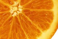 Polpa arancio immagine stock