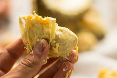 Polpa del pezzo di durian Immagini Stock