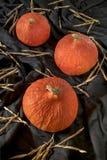 Polpa vermelha do kuri, abóbora Imagem de Stock Royalty Free