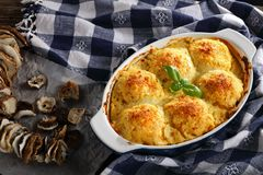 Polpette vegetariano della polenta nel piatto di cottura fotografie stock