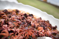 Polpi章鱼开胃小菜,意大利octupus蚂蚁pasti自助餐盘 免版税图库摄影