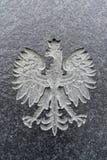 Polsk örn som snidas i marmor Polskt emblem arkivbild