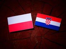 Polsk flagga med den kroatiska flaggan på en trädstubbe Royaltyfri Fotografi