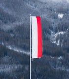 Polsk flagga som vinkar på vind mot berget som täckas av snö Arkivbilder