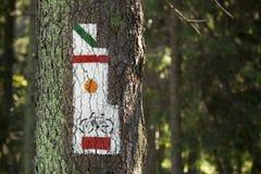 Polska, Gorce góry, ślad płonie oceny Zdjęcie Royalty Free