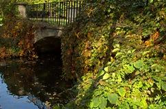 Polska Jesień Historyczny most przerastający z roślinnością fotografia royalty free
