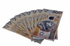 Polska pengar Fotografering för Bildbyråer