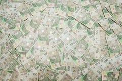 Polska pengar Arkivbild