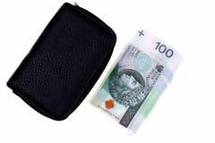 Polska pengar och plånbok Fotografering för Bildbyråer