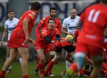 Polska, Szwajcaria rugby gra - Obraz Royalty Free