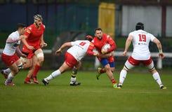 Polska, Szwajcaria rugby gra - Zdjęcia Royalty Free
