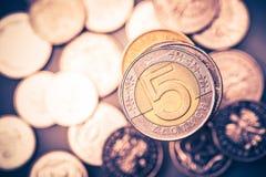 Polska valutamynt Foto för Closeup för fem Zlotymynt Royaltyfria Foton