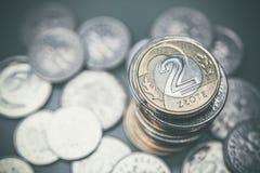 Polska valutamynt Foto för Closeup för två Zlotymynt Royaltyfri Bild