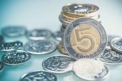 Polska valutamynt på skrivbordet Fem Zloty mynt Royaltyfri Foto