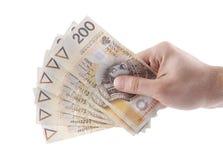 Polski pieniądze w ręce Zdjęcia Stock