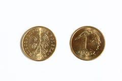 Polski pieniądze Zdjęcia Stock