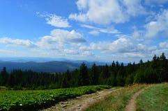 Polskie góry Zdjęcia Stock