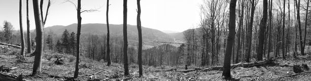 Polskie góry Bieszczady Zdjęcie Royalty Free