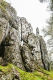 Polskt Jurassic vaggar på en kulle i den jura krakowskoczestochowskaen, slotten Birow Fotografering för Bildbyråer