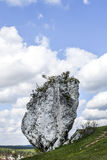 Polskt Jurassic vaggar på en kulle i Jura krakowskoczestochowska Royaltyfri Fotografi