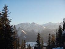 Polskt Tatry berglandskap i vinter royaltyfria foton