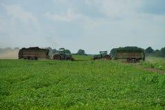 POLTAVA, UCRAINA - 29 LUGLIO 2015: Concime di diffusione del trattore sui campi Questa procedura concede raccogliere due raccolti fotografia stock libera da diritti
