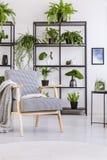 Poltrona d'annata modellata con la coperta ed il libro su nell'interno domestico moderno bianco con le piante fotografia stock libera da diritti