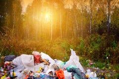 Poluição ambiental e ameaça ambiental de uma pilha do lixo rejeitado em uma floresta bonita iluminada pela luz solar fotografia de stock