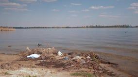 Poluição ambiental na natureza, no lixo plástico no rio sujo e em nadadas selvagens do pássaro na água vídeos de arquivo