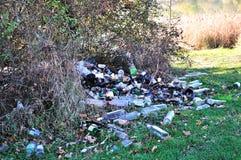 Poluição da floresta Foto de Stock Royalty Free