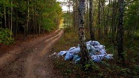 Poluição da floresta Fotografia de Stock Royalty Free