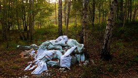 Poluição da floresta Imagens de Stock